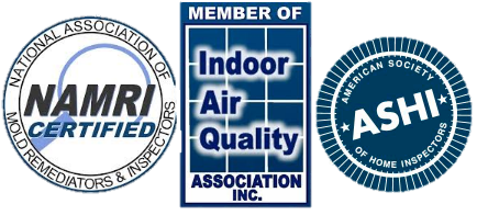 Certified mold inspector and mold removal