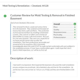Mold Testing & Remediation – Cleveland, 44128