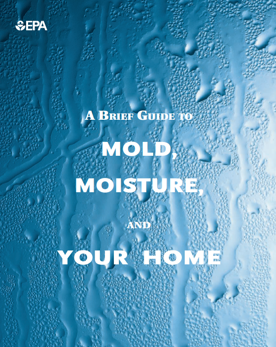 EPA's Guide to Mold in Your Home